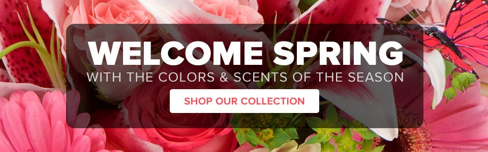 Shop Spring Flowers from Toblers Flowers with delivery to Kansas City and surrounding areas