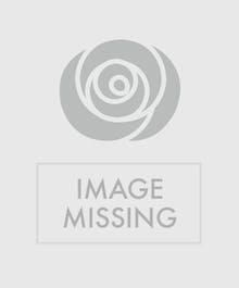 Purple Cluster