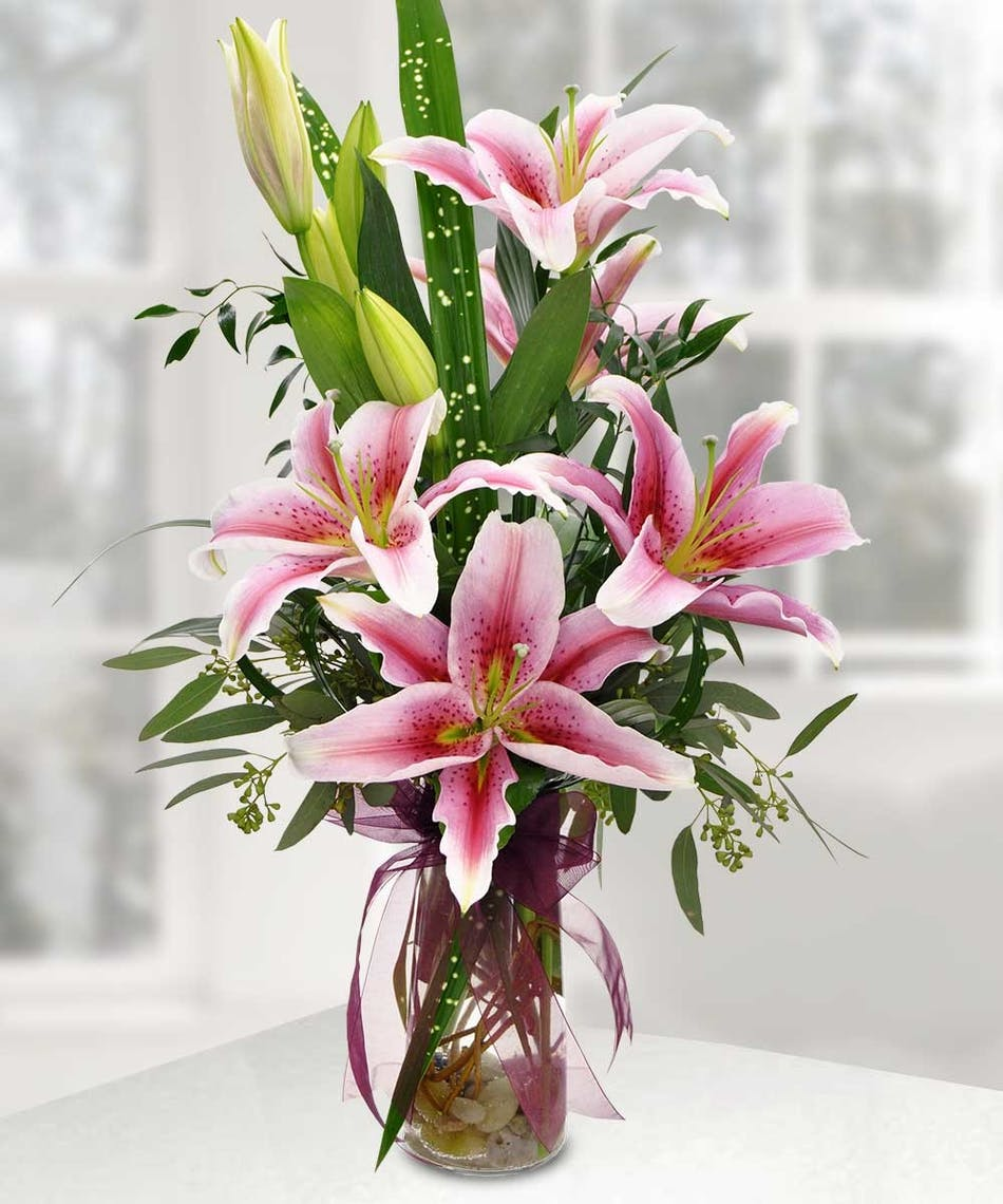 Enchanting Stargazer Lilies Beautiful Fragrant Lilies Hand Picked