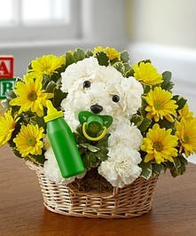 New baby flowers gifts kansas city flowers new baby puppy dog negle Gallery