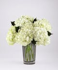 Ivory Hydrangea Bouquet
