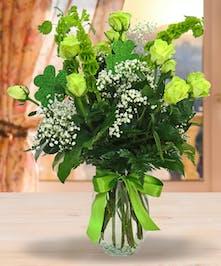 St. Patrick's Day Roses