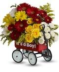 Baby's First Wagon - Boy