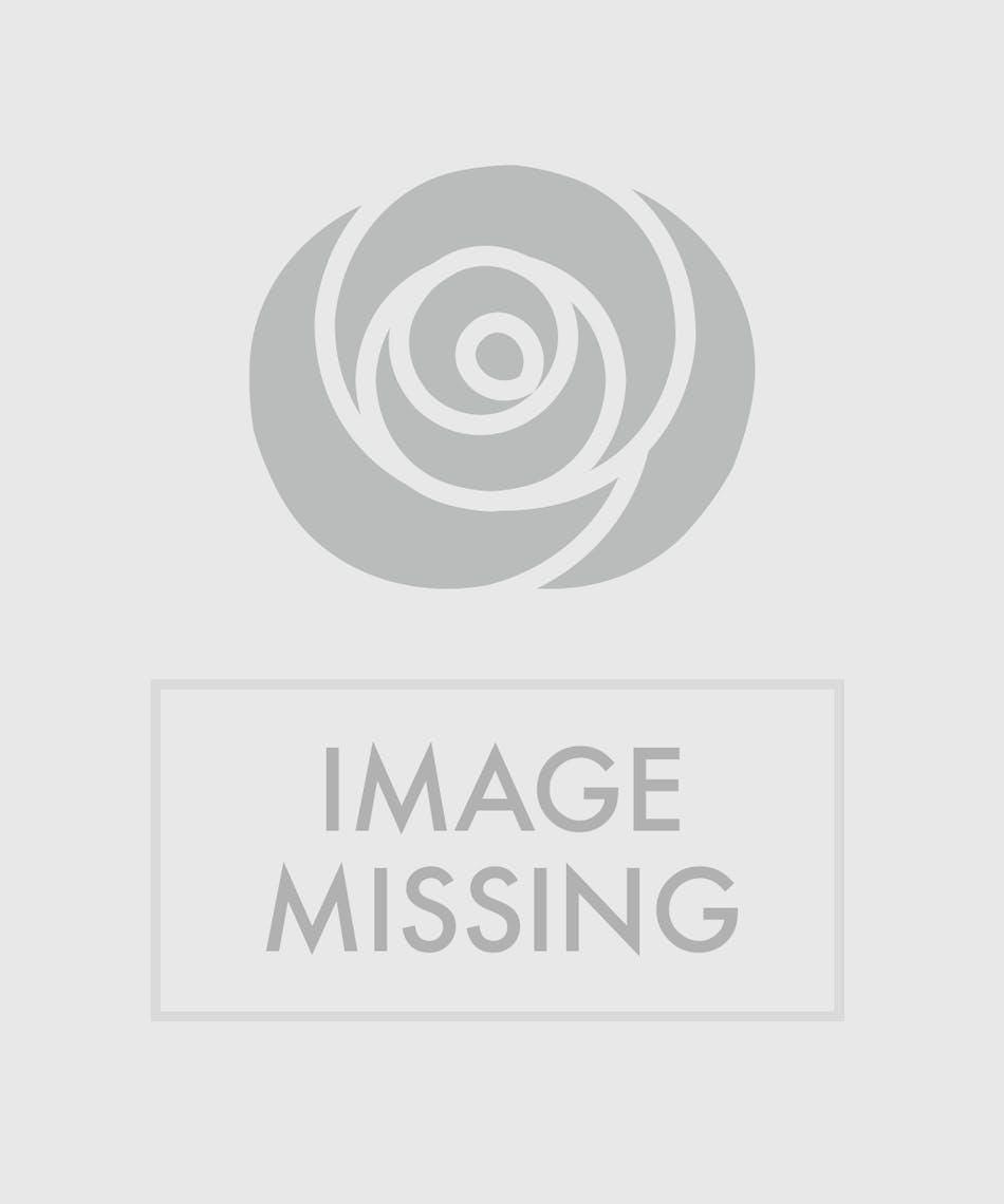 Flower Songs That Speak Volumes Toblers Flowers Blog