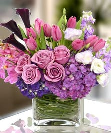 Lavender and Lilac