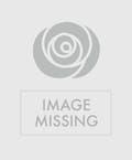 St. Patrick's Day Bouquet