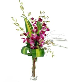 Exotic Orchid Budvase
