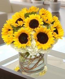 Sunflower and Hydrangea