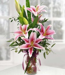 Enchanting Stargazer Lilies